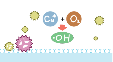 STEP2.活性酸素を発生